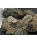 6 Rocas Grises Paisajismo Aquascape Aquascaping neutras Aprox. 3-4 Kg