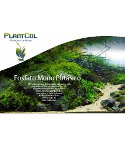 Fosfato Fertilizante para Plantas de Acuario