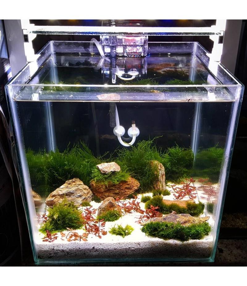 Sustrato para acuarios plantados de cuarzo for Todo para acuarios